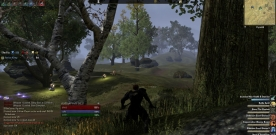 Life as an assassin in Elder Scrolls Online