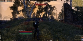 What is combat in Elder Scrolls Online?